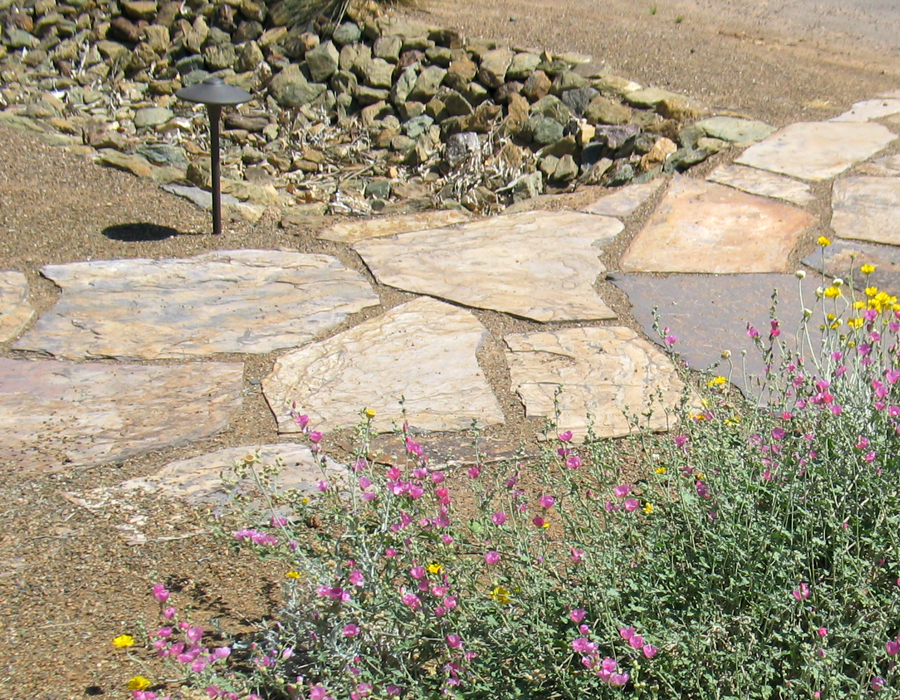 Image of a path made of flagstone pavers flanked by low-growing native perennial flowers.